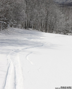 An image snowing ski tracks in fresh powder snow on the Snowflake Bentley trail at Bolton Valley Ski Resort in Vermont