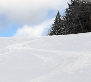An image of ski tracks in a few inches of fresh powder from an April snowstorm at Bolton Valley Ski Resort in Vermont