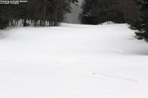 An image of a ski track in powder snow at Bolton Valley Ski Resort in Vermont