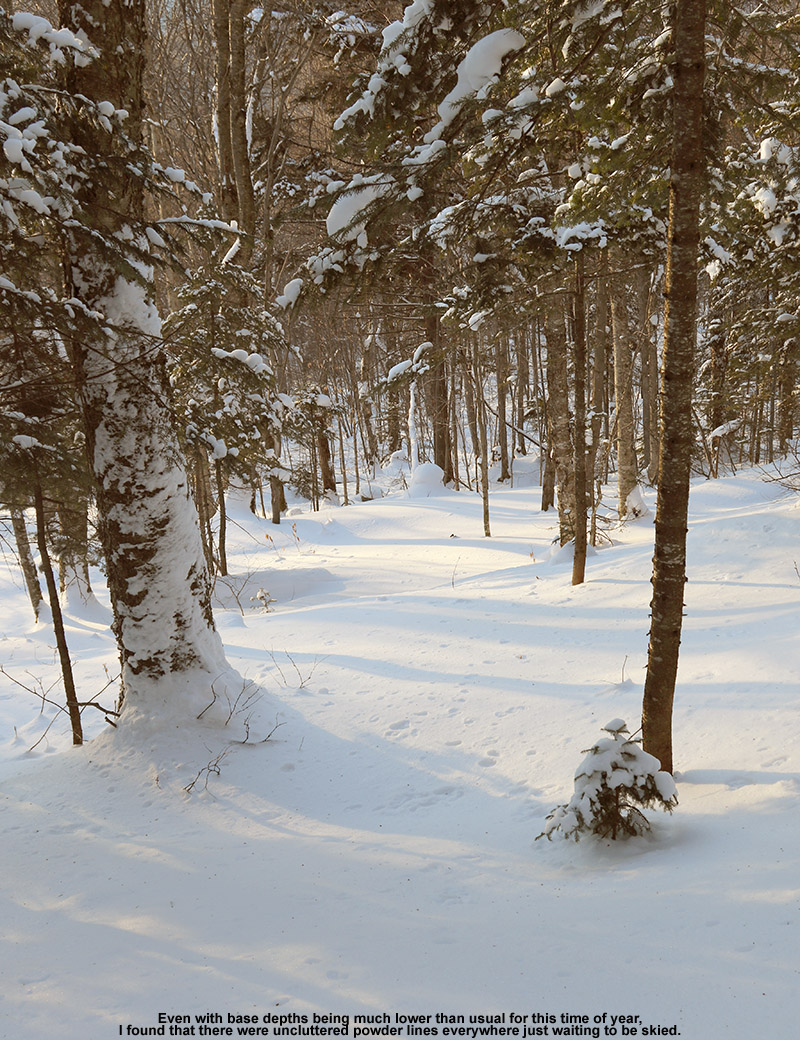 An image of a ski line with powder snow in the Girl's area of the backcountry network at Bolton Valley Ski Resort in Vermont