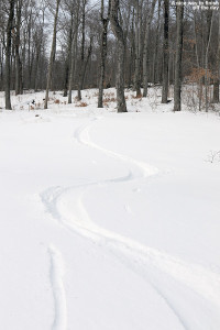 An image of ski tracks in powder at Stowe Mountain Resort in Vermont