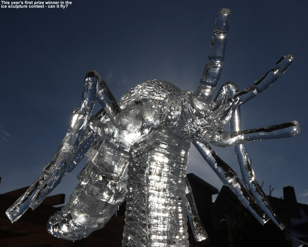 An image of an ice sculpture at Stowe Mountain Ski Resort in Vermont