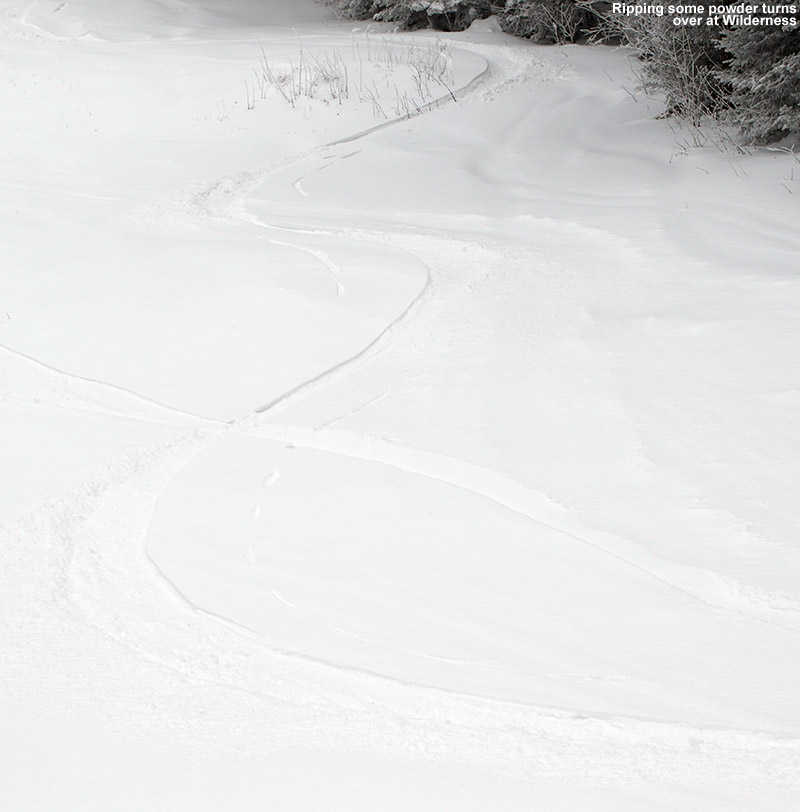 An image showing some ski trakcs in powder snow on the Wilderness Liftline Trail at Bolton Valley Resort in Vermont