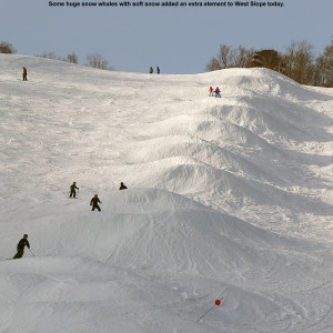 An image of the West Slope trail at Stowe Mountain Resort in Vermont with large snowmaking whales