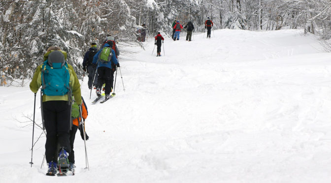 An image of skiers ascending the Lower Turnpike skin track at Bolton Valley Ski Resort in Vermont