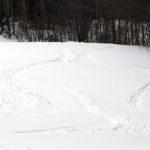 An image of ski tracks on powder snow on the Tattle Tale trail at Bolton Valley Resort in Vermont