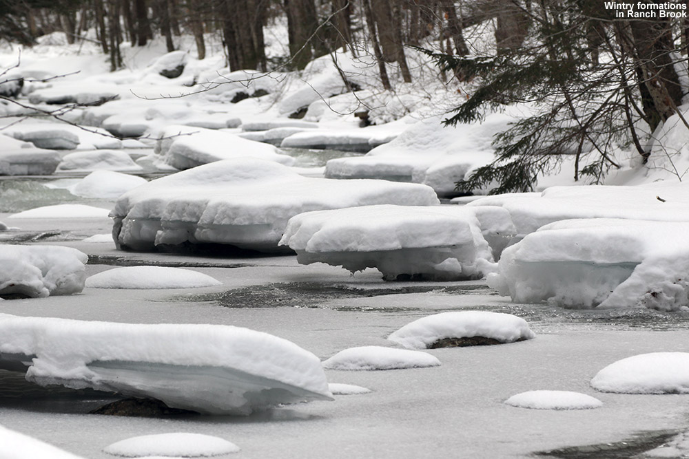 An image showing ice formations on Ranch Brook in Stowe, Vermont