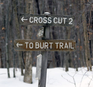 An image of a sign for the Burt Trail on the trail network at Stowe Cross Country Center in Vermont