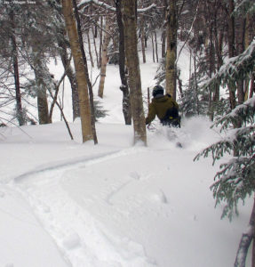 An image of Jay skiing in the Villager Trees area at Bolton Valley Resort in Vermont