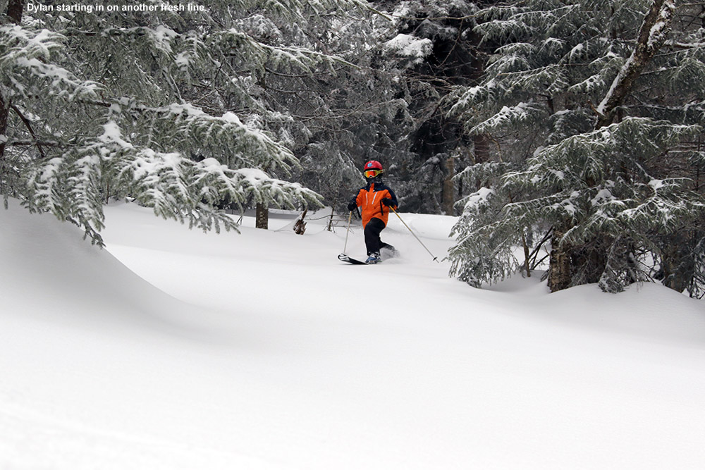 An image of Dylan skiing powder snow in the Villager Trees area at Bolton Valley Resort in Vermont