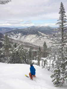An image of Ty skiing some powder in terrain above the Nosedive trail at Stowe Mountain Resort in Vermont