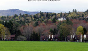 An image of green grass and early spring foliage in the mountains of Northern Vermont around Stowe