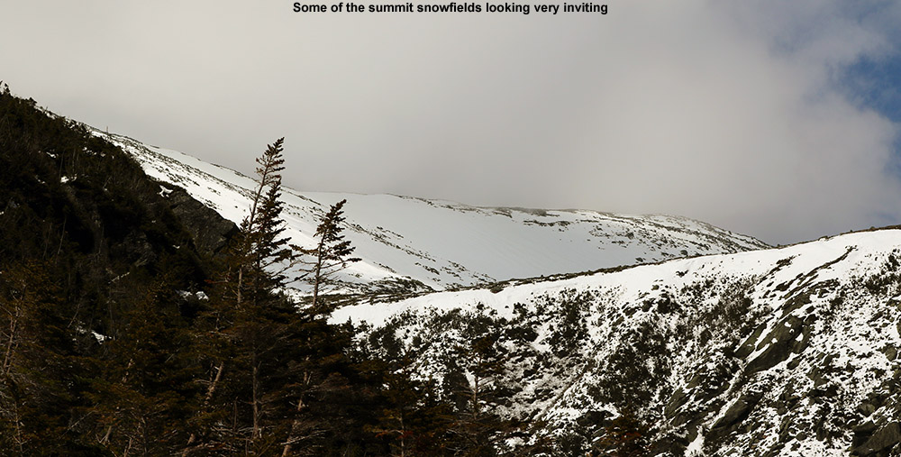 An image of the summit snowfields of Mt. Washington in New Hampshire