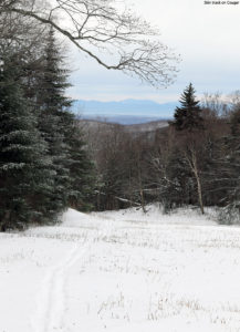 An image of a skin track on the Cougar trail at Bolton Valley Ski Resort in Vermont