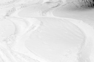 An image of ski tracks in powder snow at Bolton Valley Resort in Vermont