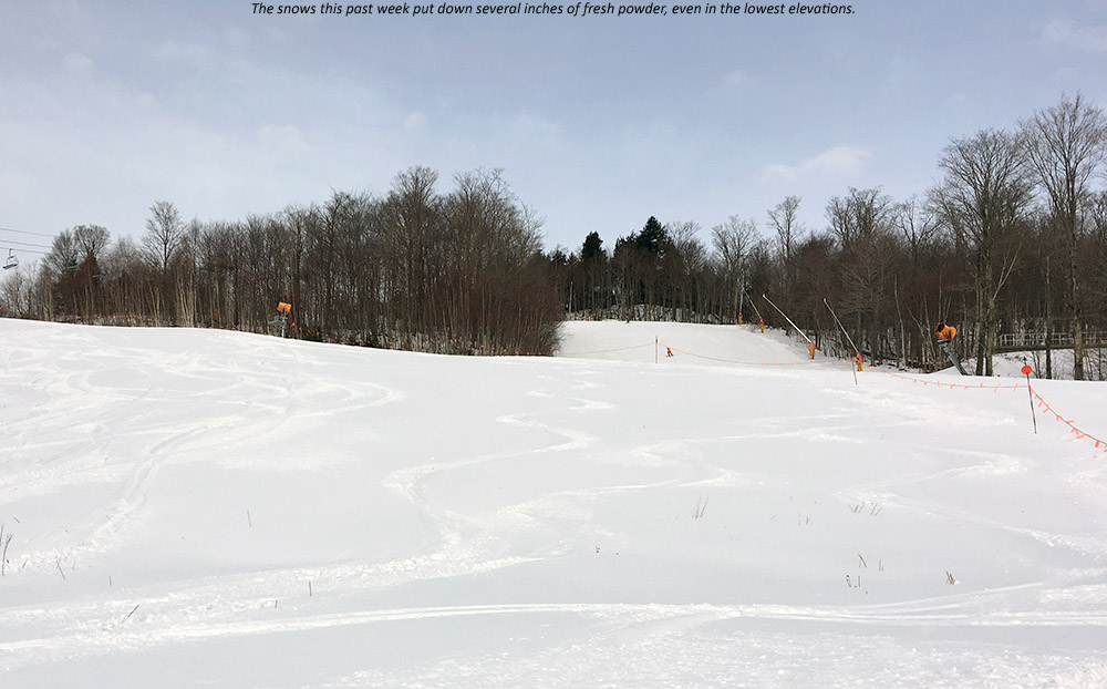 An image showing ski tracks in powder snow in the Meadows area of Spruce Peak at Stowe Mountain Resort in Vermont