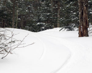 An image of a ski track in powder snow in the backcountry at Bolton Valley Ski Resort in Vermont