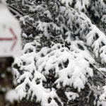 A direction arrow and snowy evergreens on the backcountry network at Bolton Valley Resort in Vermont