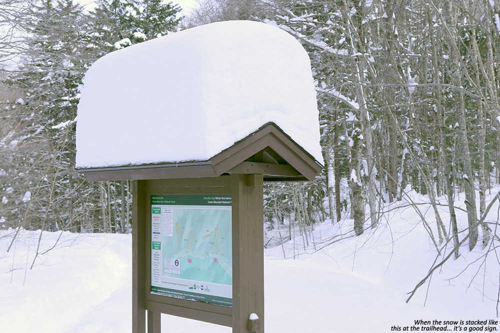 An image of the map at the Bear Brook Bowl trailhead at the Brandon Gap Backcountry Recreation Area in Vermont