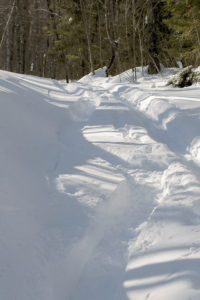 An image of ski turns in powder snow along the Woodward Mountain Trail in the backcountry near Bolton Valley Resort in Vermont