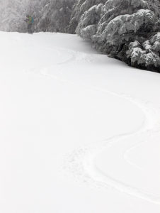 An image of ski tracks in fresh powder on the Alta Vista trail at Bolton Valley Ski Resort in Vermont