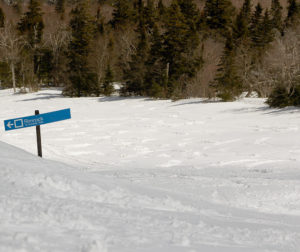 An image of the Nosedive trail at Stowe Mountain Resort in Vermont after a late April snowfall