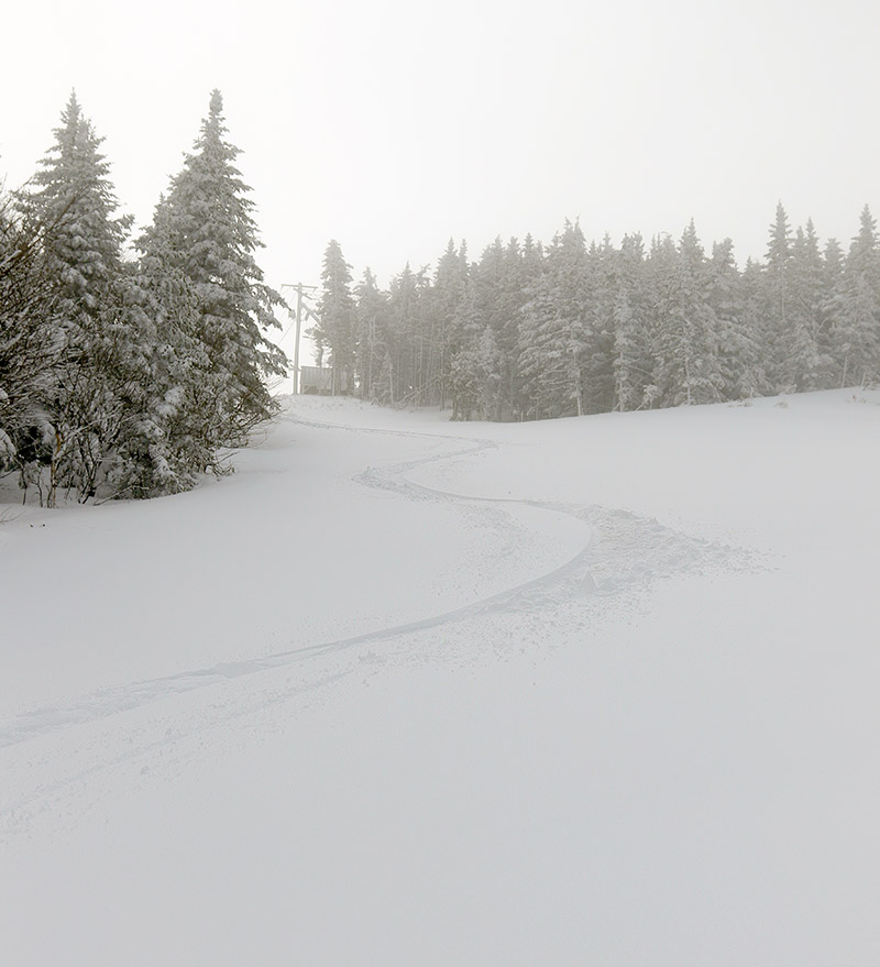 An image of ski tracks in fresh snow on the Spillway Lane trail at Bolton Valley Ski Resort in Vermont after a late April snowstorm