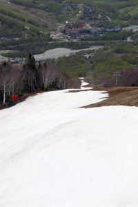 An image of leftover spring snow on the Liftline Trail at Stowe Mountain Resort in Vermont on a ski tour in May