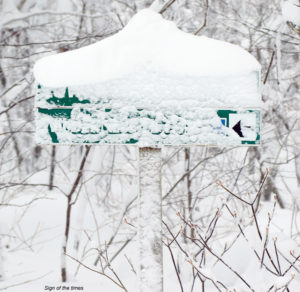 A trail sign covered in snow at Bolton Valley Ski Resort in Vermont