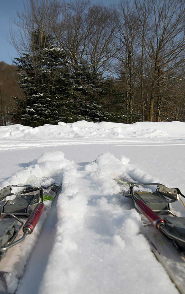 An image of fat Telemark skis in a couple inches of powder in one of the Nordic Center parking lots at Bolton Valley Ski Resort in Vermont
