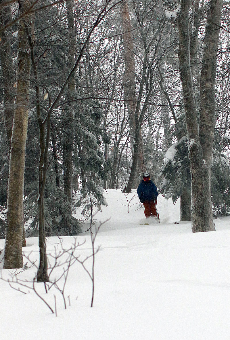 An iamge of Ty skiing powder in the Bonus Woods at Bolton Valley Ski Resort in Vermont