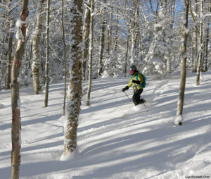 An image of Erica skiing the Cup Runneth Over glade on the backcountry network at Bolton Valley Resort in Vermont
