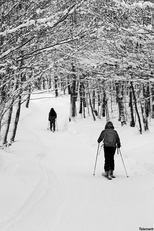 An image of Erica and Ty ski touring on the Telemark trail on the backcountry network at Bolton Valley Ski Resort in Vermont