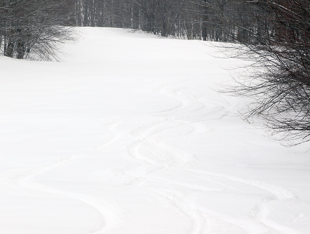 An image of the spell Binder trail with ski tracks in powder at Bolton Valley Resort in Vermont