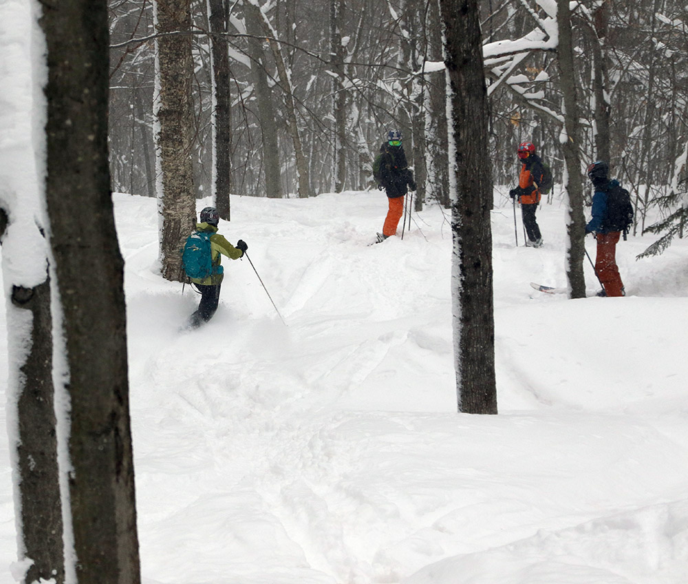 An image showing Erica, Ivan, Dy;an, and Ty skiing powder in one of the great backcountry glades created by the Rochester/Randolph Area Sport Trail Alliance at Brandon Gap in Vermont
