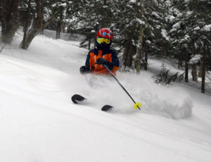 An image of Dylan skiing powder in the Villager Trees area of Bolton Valley Resort in Vermont