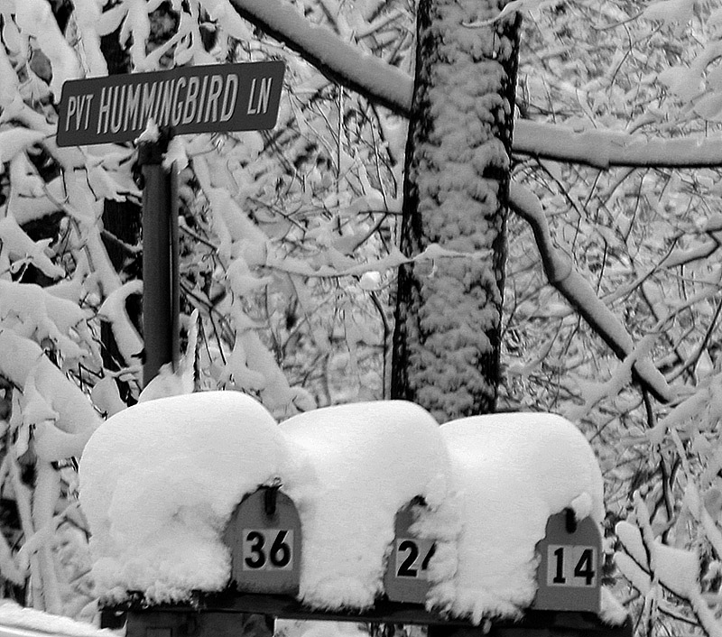An image of mailboxes near Bolton Valley Ski Resort in Vermont covered in spring snow after a big spring snowstorm hit the area