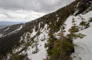 A view of the Rock Garden area near the treeline on Mt. Mansfield above Stowe Mountain Ski Resort in Vermont