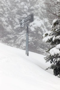 An image of some ski trails signs in the Nosedive area with fresh snow during a May ski tour at Stowe Mountain Resort in Vermont