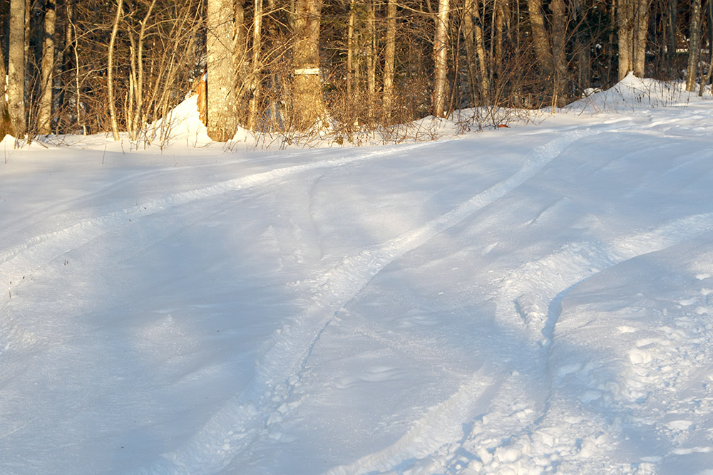 An image of ski tracks in some November powder at Bolton Valley Ski Resort in Vermont
