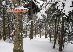 An image of the C Bear Woods area sign on the backcountry network at Bolton Valley Ski Resort in Vermont