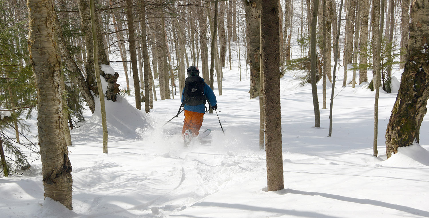 An image of Ty powder skiing though a glade on Backcountry Trail Network at Bolton Valley Ski Resort in Vermont
