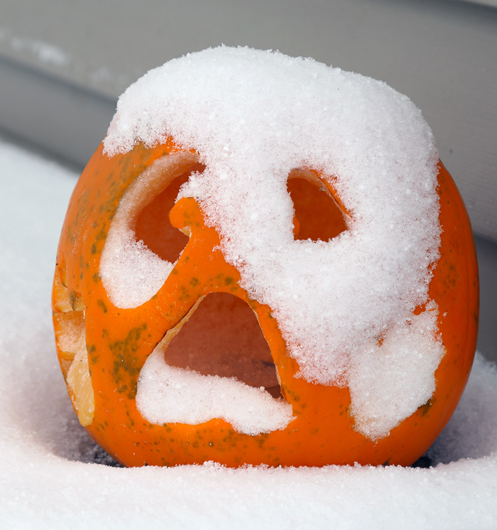 An image of snow on a Jack-o'-lantern from an early November snowstorm in Waterbury, Vermont