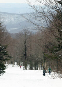 An image of some skiers ascending the skin track on the Turnpike trail at Bolton Valley Ski Resort in Vermont