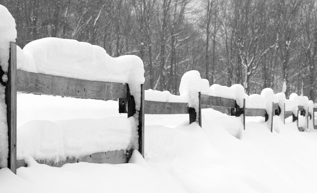 An image of a fence covered with snow from various winter storms, including Winter Storm Orlena, near the Timberline Base Area at Bolton Valley Ski Resort in Vermont