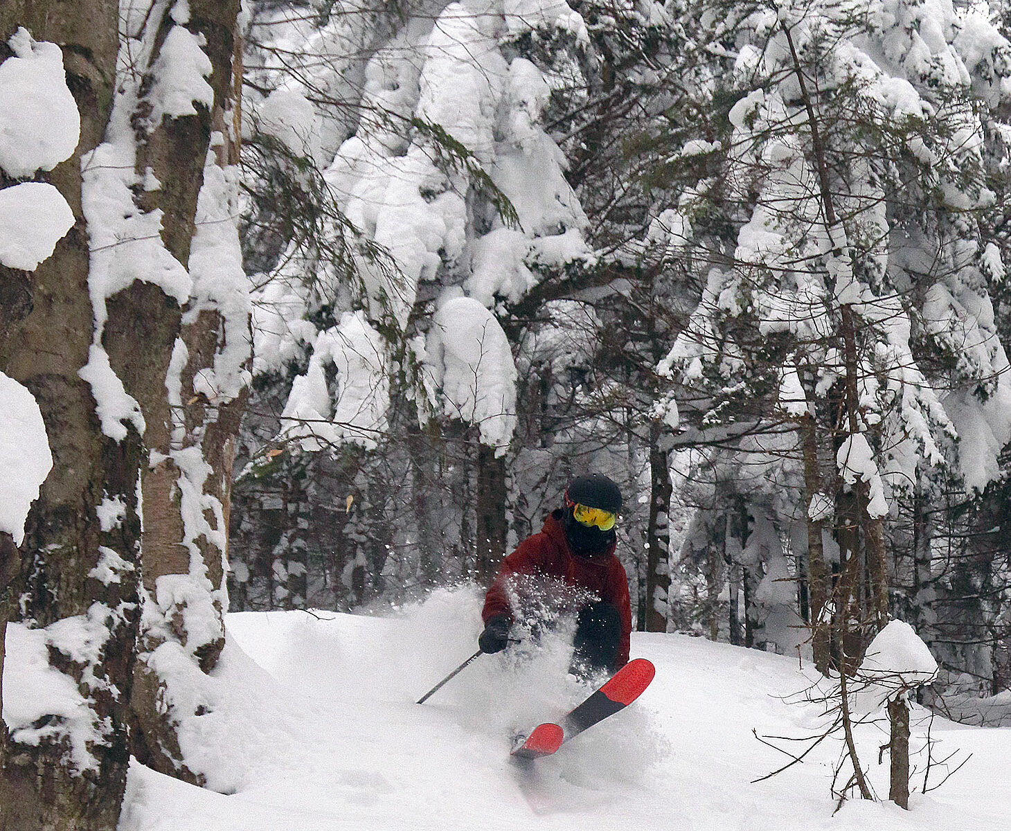 An image of Dylan skiing powder from Winter Storm Peggy in the Villager Trees at Bolton Valley Resort in Vermont