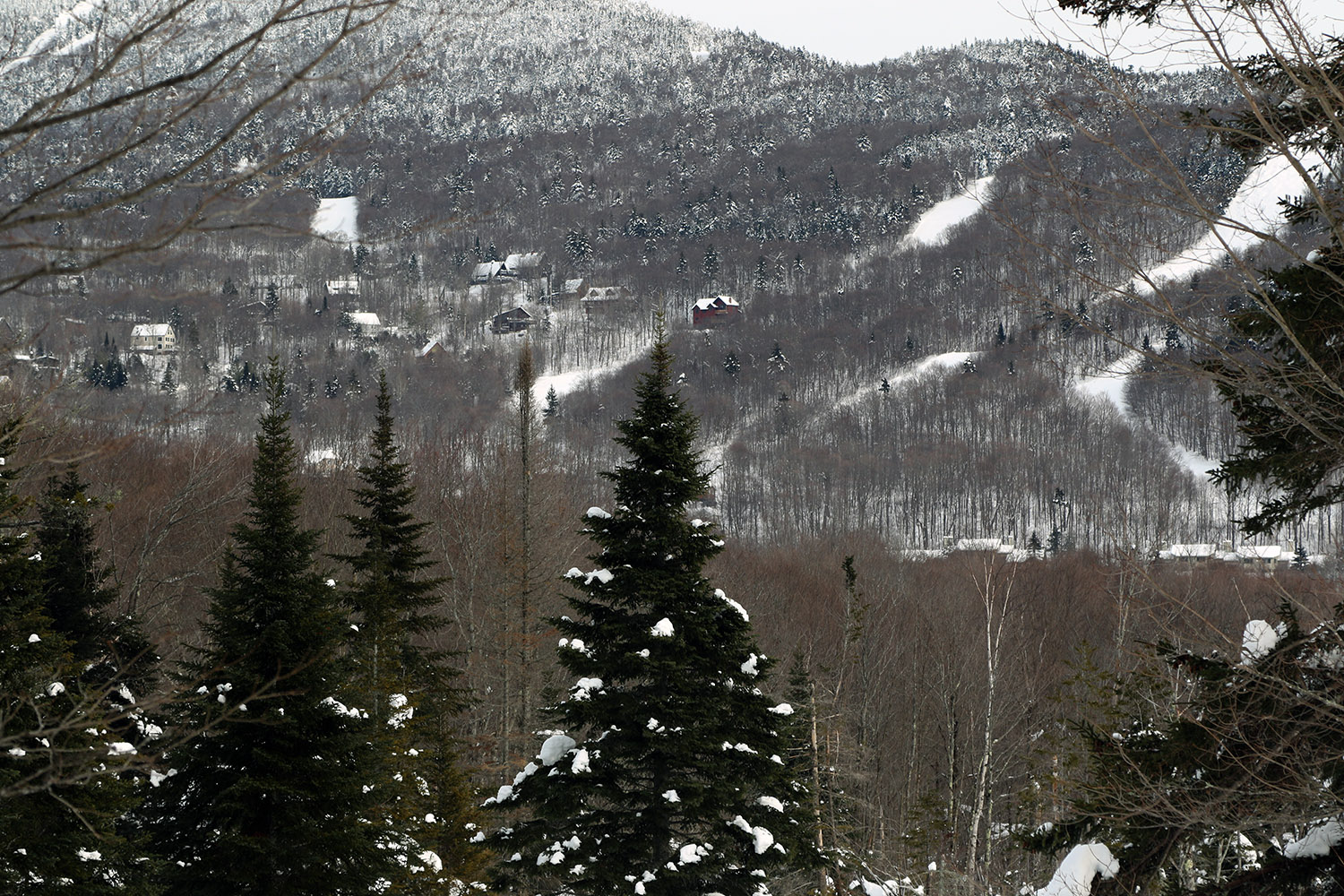 An image looking across from the Moose-Ski trail in the beaver ponds area of the Bolton Valley Nordic & Backcountry Network toward the Bolton Valley Village at Bolton Valley Ski Resort in Vermont