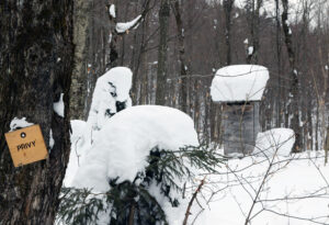 An image showing the privy building by the Buchanan Shelter on the Nordic & Backcountry Network at Bolton Valley Ski Resort in Vermont