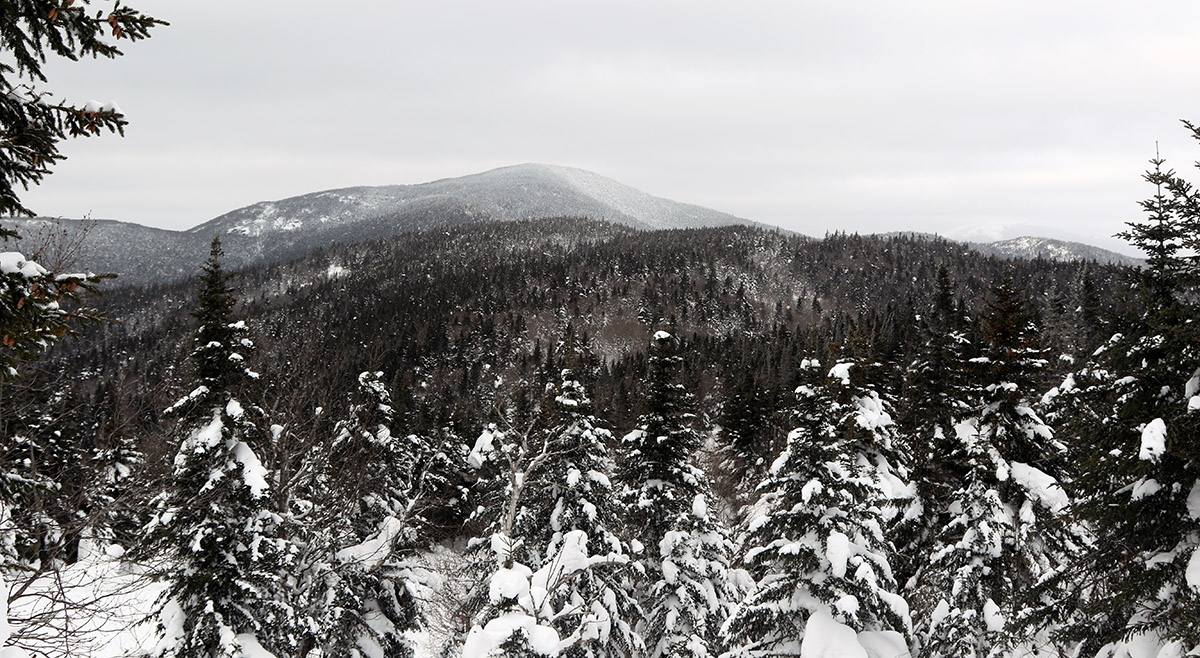 An image showing the view from the Wilderness at Bolton Valley Ski Resort in Vermont