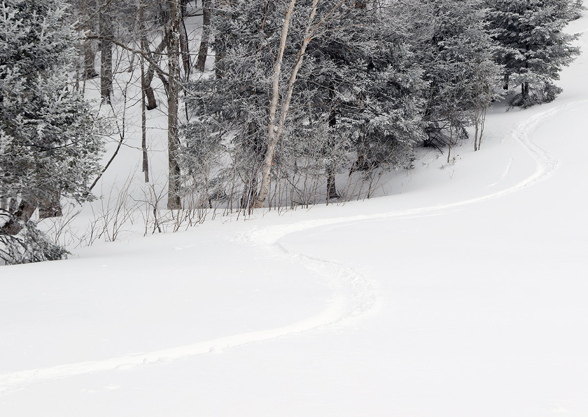 An image of ski tracks in powder snow on the Wilderness Chair Lift Line after a couple of March snowstorms at Bolton Valley Ski Resort in Vermont